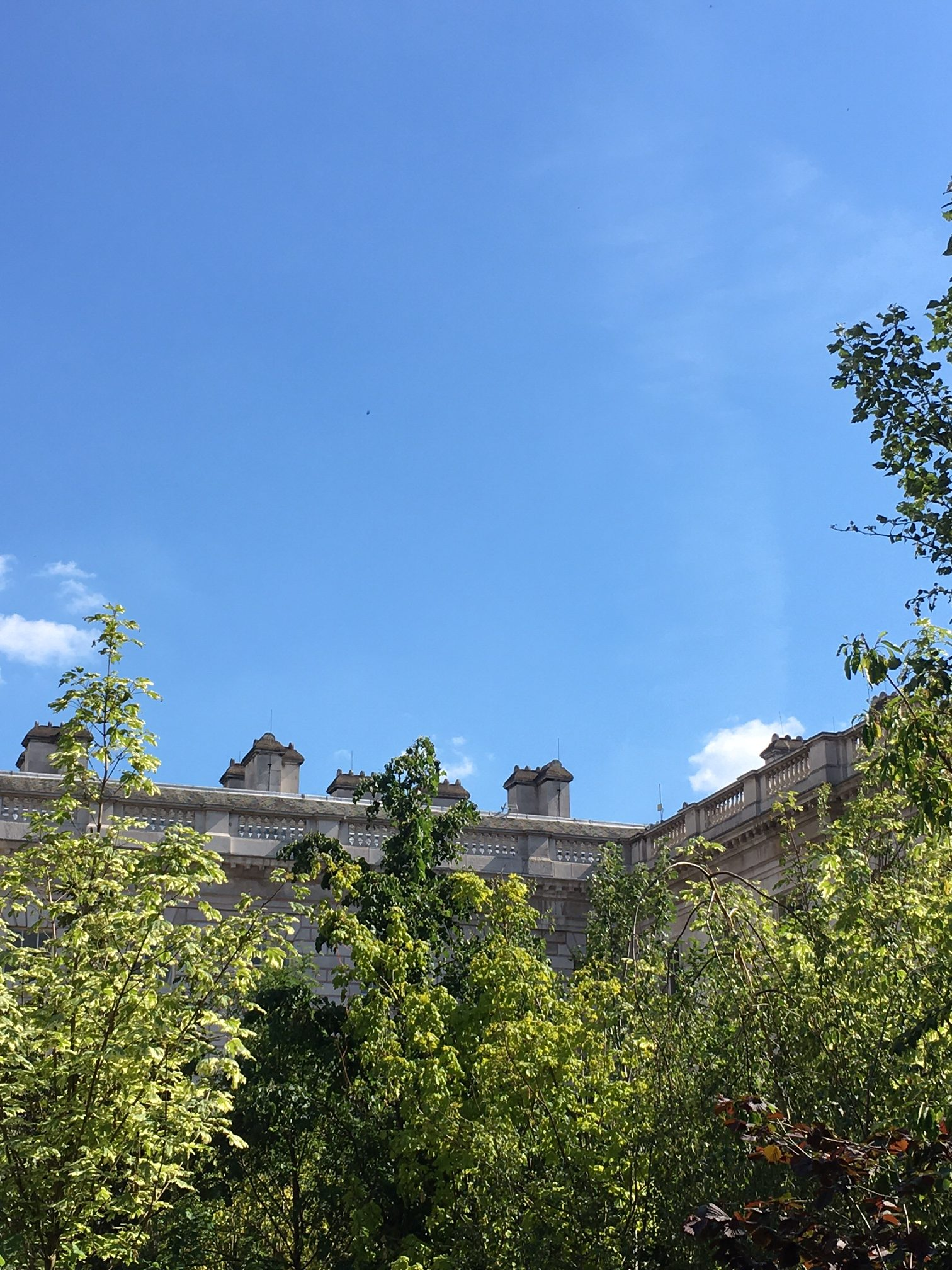 Somerset House and the Forest of Change